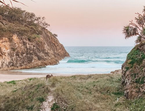 The best season to visit Minjerribah (North Stradbroke Island)